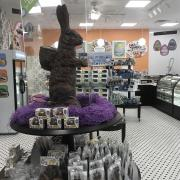 A picture of Kilwins 22lb chocolate bunny