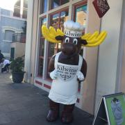 Picture of the Kilwins Moose outside of the store