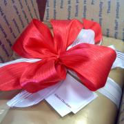 Photo of gift box with large red bow