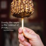 Photo of a Turtle Caramel Apple